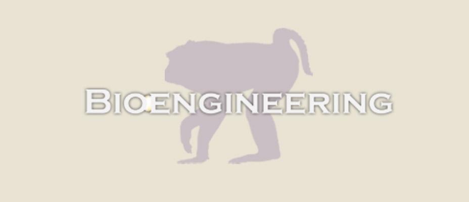 Washington National Primate Research Center Bioengineering logo